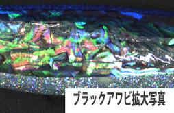 ブラック拡大写真.jpg