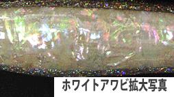 ホワイト拡大写真.jpg